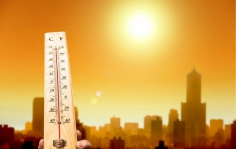 Beat the Heat (Safety Tips)