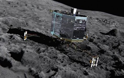 Rosetta Finally Landed