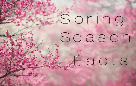 Spring Season Facts