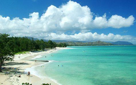 Adventorous Hawaii