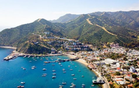 My Experience at Catalina Island