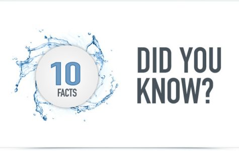 10 Interesting Facts That You Probably Don't Know