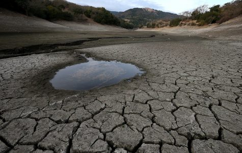 Is The Drought Over?