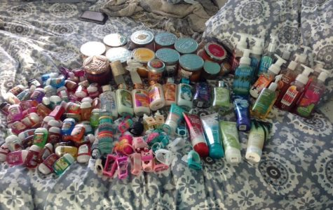 Review: Bath & Body Works Pocketbacs