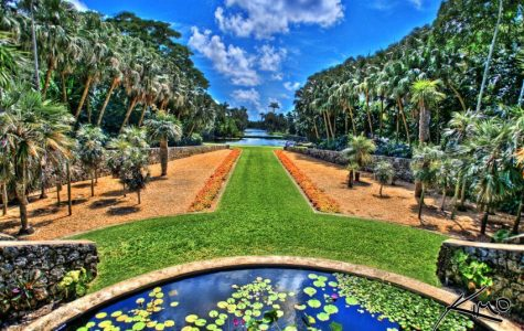 Top 5 Botanical Garden/Garden in the world
