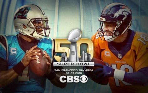 Panthers vs' Broncos, Who will win !!  ? ❤️