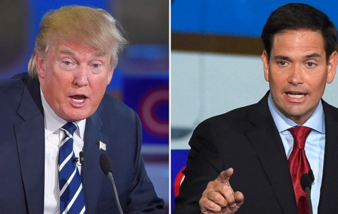 Donald Trump Leads Marco Rubio by 16 Points in New Florida Poll