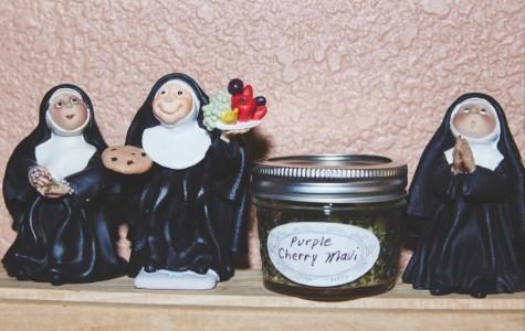 Two California Nuns Grow Medical Marijuana