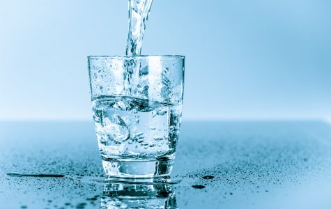 Why Drinking Water is Important To Your Daily Diet