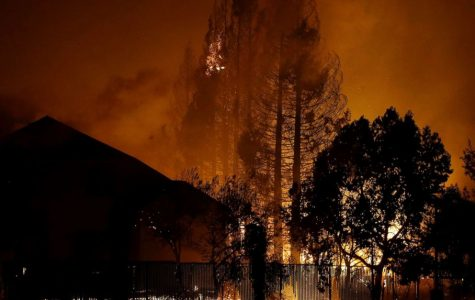 Wildfires ravage Northern California; at least 13 killed