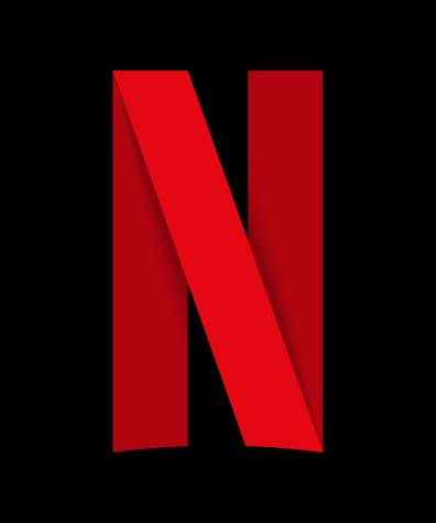 How Netflix Began