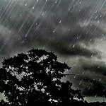 10 facts about the rain