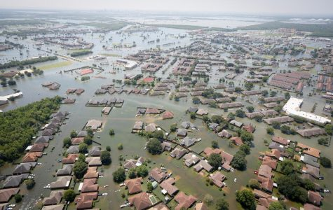 Coastal cities may flood due to global warming