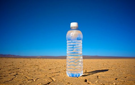 The Story Of the Water Bottle