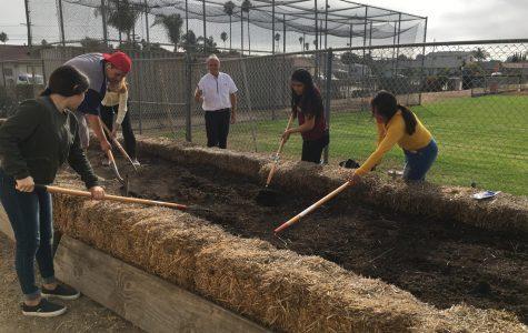 Hueneme High School's Very own Gardening Club