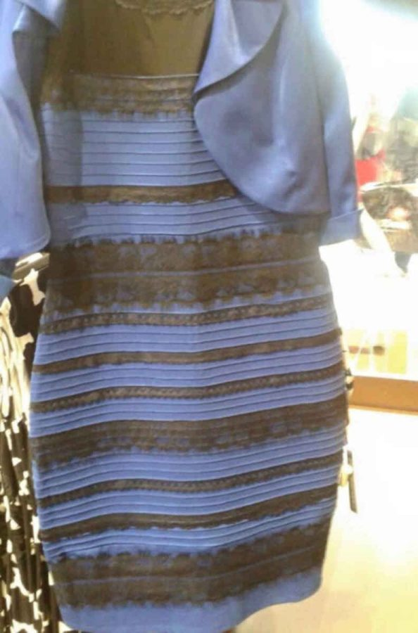 What+Color+Dress+Do+You+See%3F