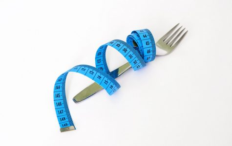 How Weight Loss Works