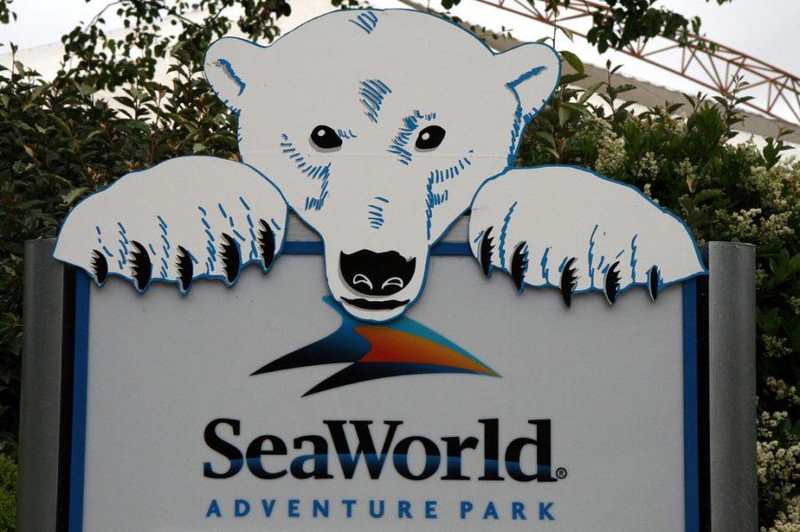 Should SeaWorld Be Taken Down ?