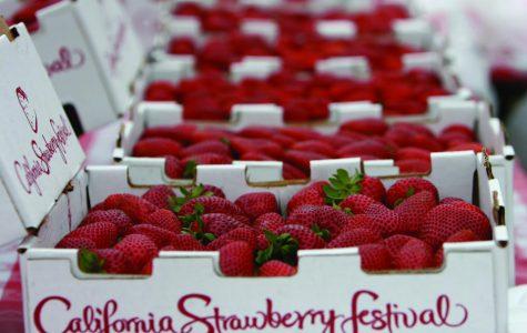 California Strawberry Festival 2019
