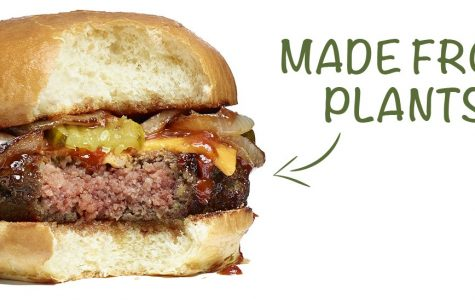 Beyond Meat and Impossible Foods – Food of The Future